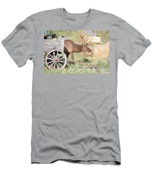 Elk Drawn Carriage Men's T-Shirt (Athletic Fit)
