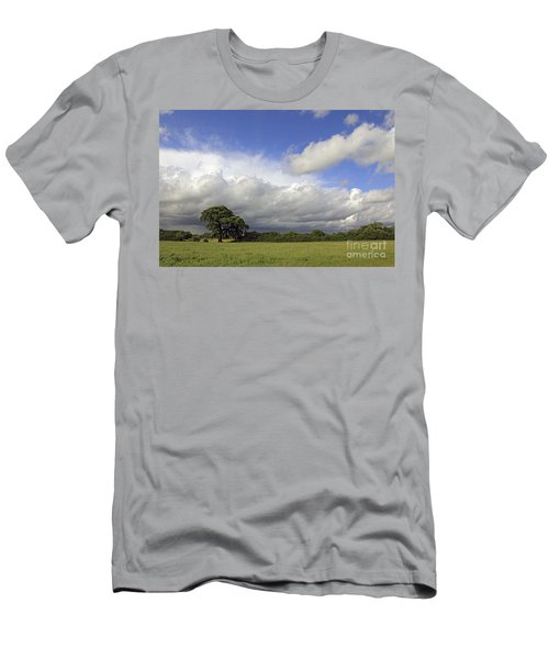 English Oak Under Stormy Skies Men's T-Shirt (Athletic Fit)