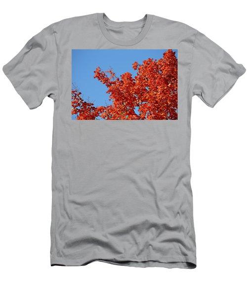 Fall Foliage Colors 20 Men's T-Shirt (Athletic Fit)