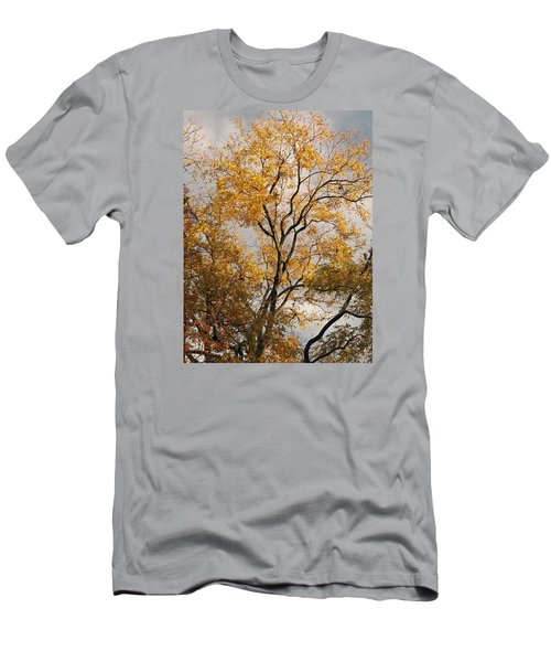 First Day Of Winter 2 Men's T-Shirt (Slim Fit) by Connie Fox