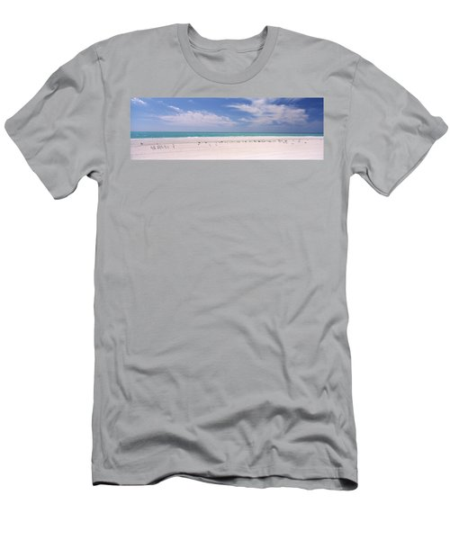 Flock Of Seagulls On The Beach, Lido Men's T-Shirt (Athletic Fit)
