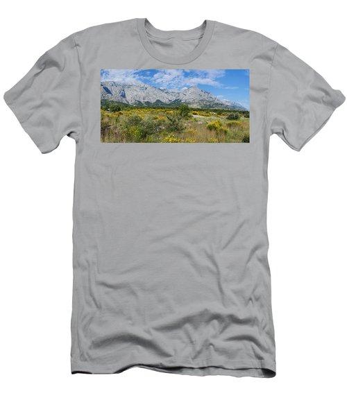 Flowering Broom, Biokovo Mountain Men's T-Shirt (Athletic Fit)