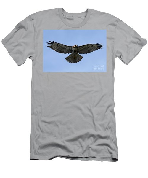Flying Free - Red-tailed Hawk Men's T-Shirt (Athletic Fit)