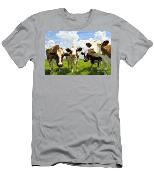 Four Chatting Cows Men's T-Shirt (Athletic Fit)