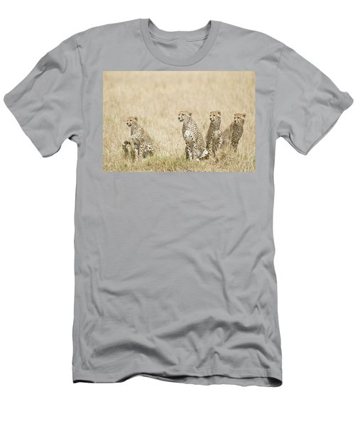 Four Cheetah Cubs Acinonyx Jubatus Men's T-Shirt (Athletic Fit)