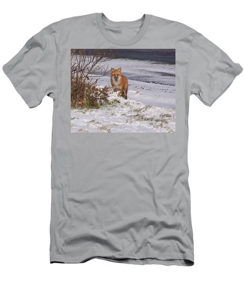 Fox In My Yard Men's T-Shirt (Athletic Fit)