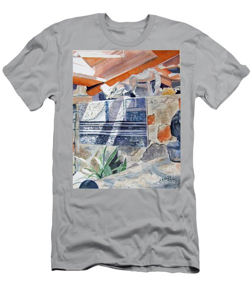 Frank Lloyd Wright Taliesin West 2 Men's T-Shirt (Athletic Fit)