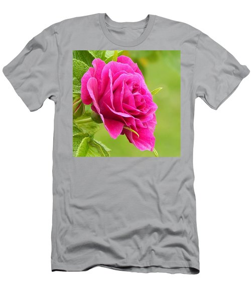 Friendship Rose Men's T-Shirt (Athletic Fit)