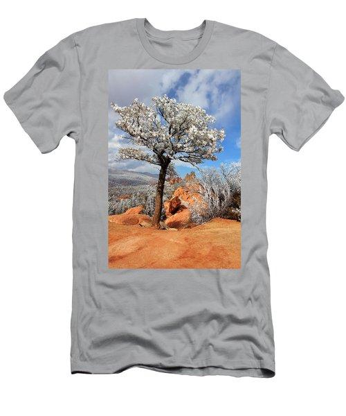 Frosted Wonderland 3 Men's T-Shirt (Slim Fit) by Diane Alexander