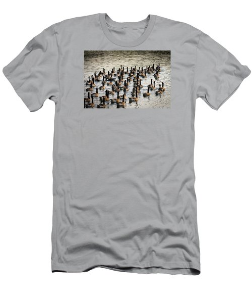 Geese In Sunset Light Men's T-Shirt (Slim Fit) by Menachem Ganon