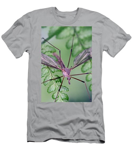 Ghost On A Fern Men's T-Shirt (Athletic Fit)