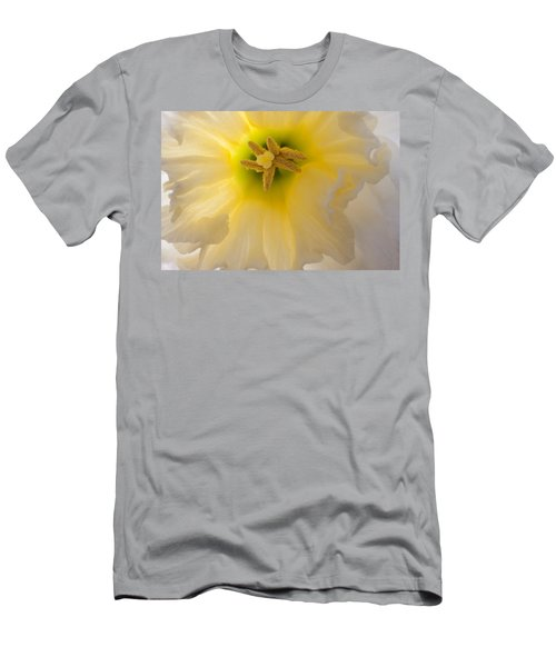 Glowing Daffodil Men's T-Shirt (Athletic Fit)