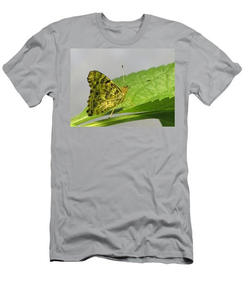 Gold And Green  Men's T-Shirt (Slim Fit) by Jennifer Wheatley Wolf