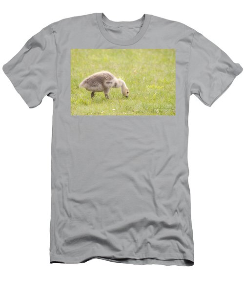 Gosling Men's T-Shirt (Slim Fit) by Jeannette Hunt