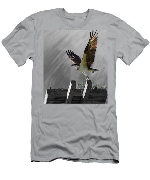 Grand Ole Osprey Men's T-Shirt (Slim Fit) by Davandra Cribbie