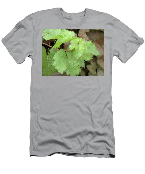 Men's T-Shirt (Slim Fit) featuring the photograph Grapevine by Laurel Powell