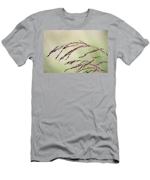 Grass Seed Men's T-Shirt (Athletic Fit)