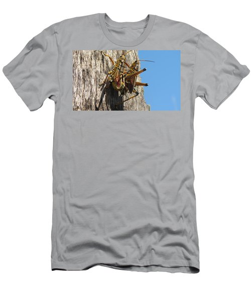 Grasshoppers Men's T-Shirt (Athletic Fit)