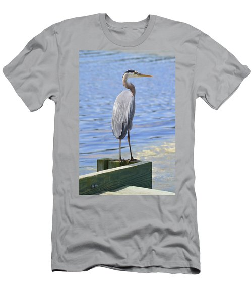 Great Blue Heron Men's T-Shirt (Athletic Fit)