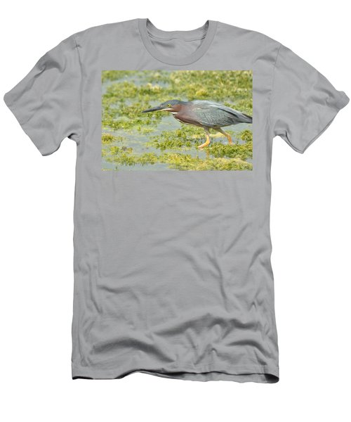 Green Heron On The Hunt Men's T-Shirt (Athletic Fit)