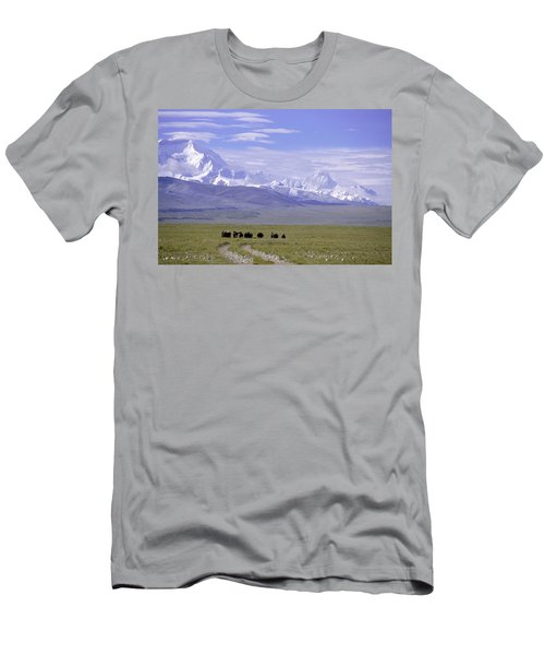 Group Of Yaks Walk Across A Green Men's T-Shirt (Athletic Fit)