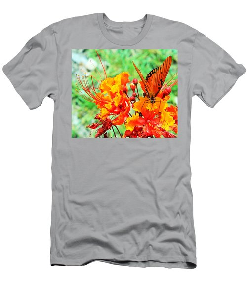 Gulf Fritillary Butterfly On Pride Of Barbados Men's T-Shirt (Athletic Fit)