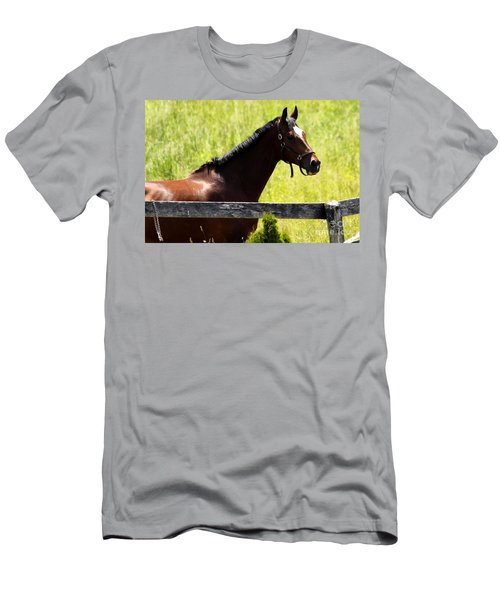 Handsom Horse Men's T-Shirt (Athletic Fit)