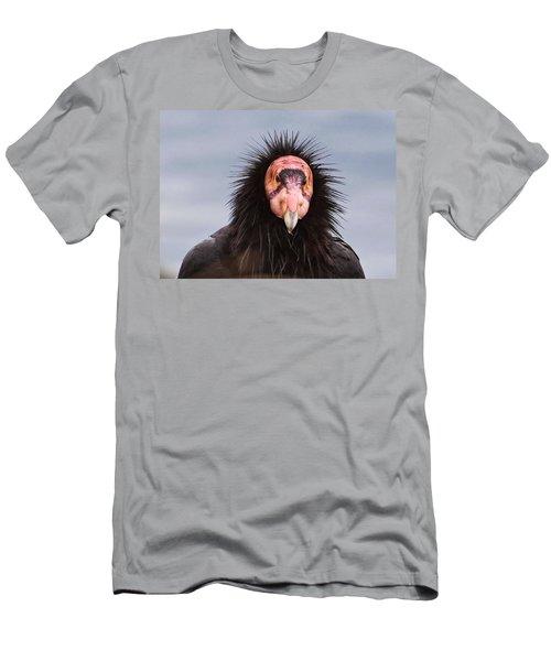 Handsome California Condor Men's T-Shirt (Athletic Fit)