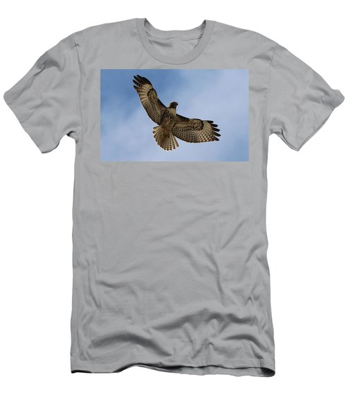 Hawk In Flight  Men's T-Shirt (Athletic Fit)