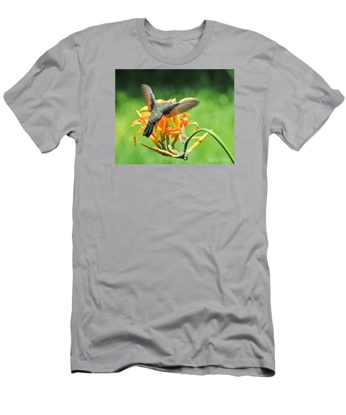 Men's T-Shirt (Slim Fit) featuring the photograph Hummingbird At Lunchtime by David Perry Lawrence
