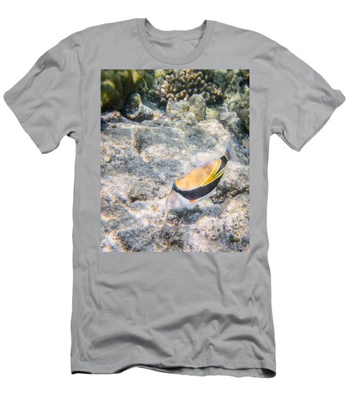 Humuhumunukunukuapua'a Men's T-Shirt (Athletic Fit)