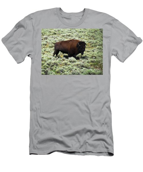 I Am The King Of This Meadow Men's T-Shirt (Slim Fit) by Ausra Huntington nee Paulauskaite
