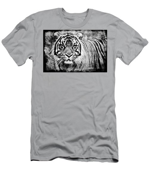 In The Midst Of A Tiger II Men's T-Shirt (Athletic Fit)