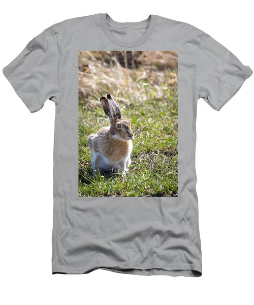 Jackrabbit Men's T-Shirt (Athletic Fit)