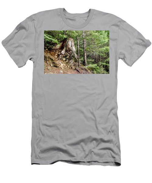 Just Hanging On Old Growth Forest Stump Men's T-Shirt (Slim Fit) by Roxy Hurtubise