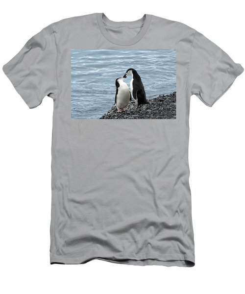 Kiss Me You Fool Men's T-Shirt (Athletic Fit)