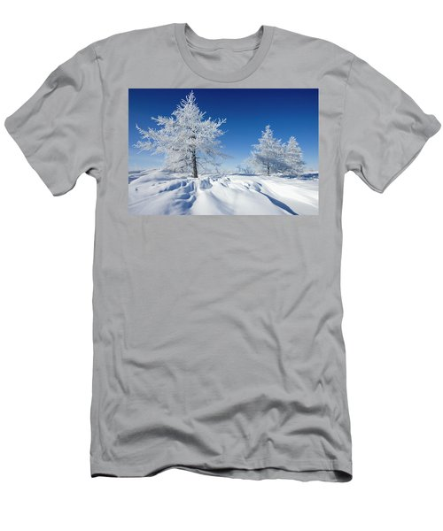 Lodgepole Pine Stand Men's T-Shirt (Athletic Fit)