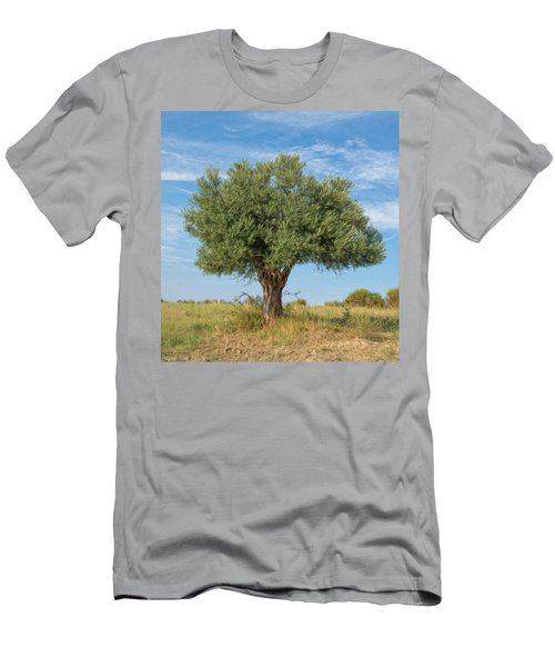 Lonely Olive Tree Men's T-Shirt (Athletic Fit)
