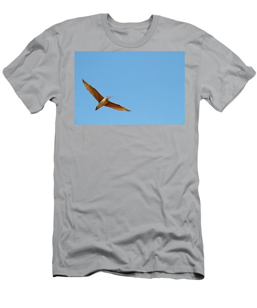 Long-billed Curlew In Flight Men's T-Shirt (Athletic Fit)