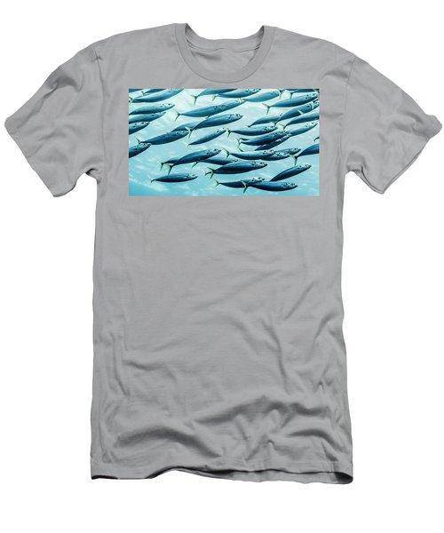 Mackerel Scad  Decapterus Macarellus Men's T-Shirt (Athletic Fit)