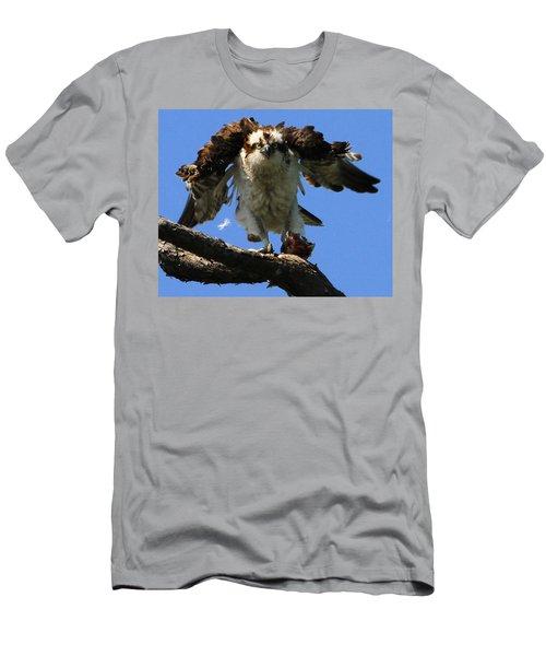 Mad Osprey Men's T-Shirt (Athletic Fit)