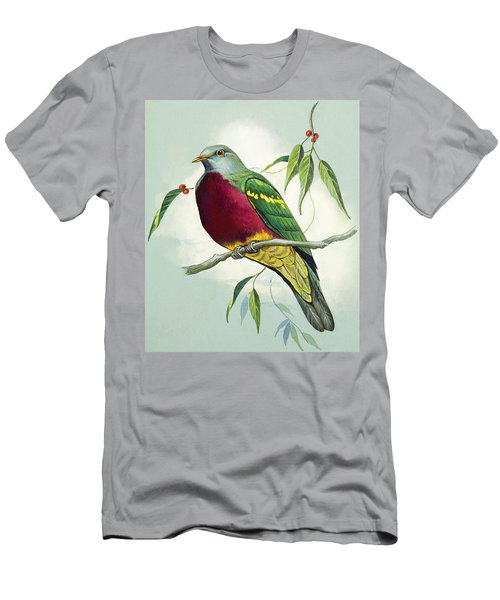Magnificent Fruit Pigeon Men's T-Shirt (Slim Fit) by Bert Illoss