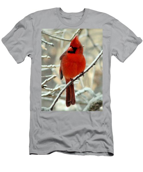 Men's T-Shirt (Slim Fit) featuring the photograph Male Cardinal  by Janette Boyd
