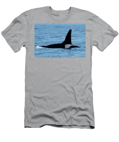 Men's T-Shirt (Slim Fit) featuring the photograph Male Orca Killer Whale In Monterey Bay 2013 by California Views Mr Pat Hathaway Archives
