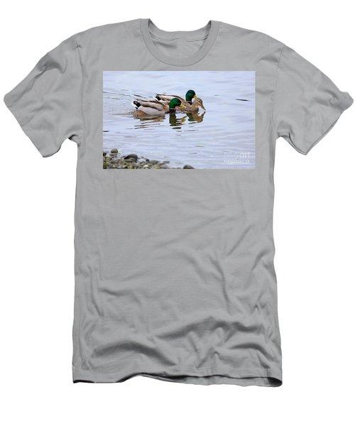 Mallard Ducks Men's T-Shirt (Athletic Fit)