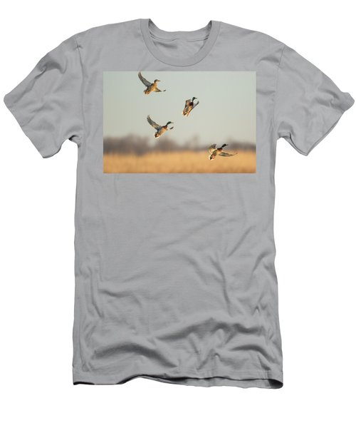 Mallards Anas Platyrhynchos Flying Men's T-Shirt (Athletic Fit)