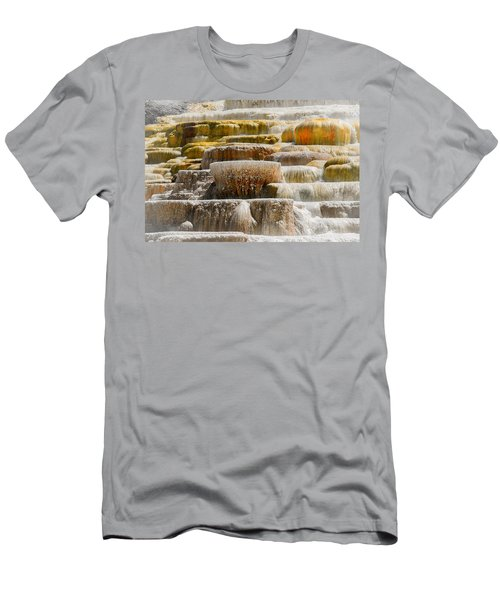 Mammoth Springs Men's T-Shirt (Athletic Fit)