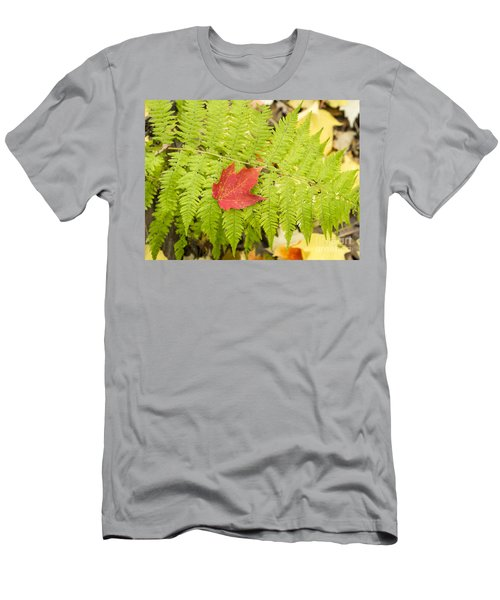 Maple On Fern Men's T-Shirt (Athletic Fit)