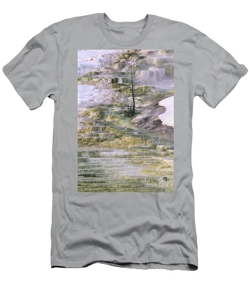 Minerva Springs Terraces Yellowstone National Park Men's T-Shirt (Athletic Fit)