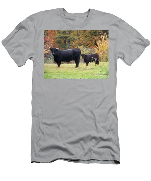 Men's T-Shirt (Slim Fit) featuring the photograph Highland Cattle  by Eunice Miller